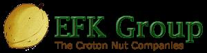 EFK Group Logov3-300x78