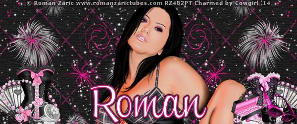 Roman Aureiljia Banner  14