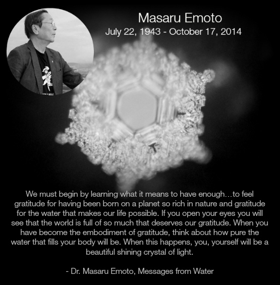 masaru-emoto-love-gratitude-quote