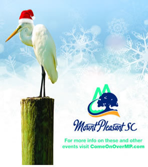 Mt Pleasant egret with Santa hat