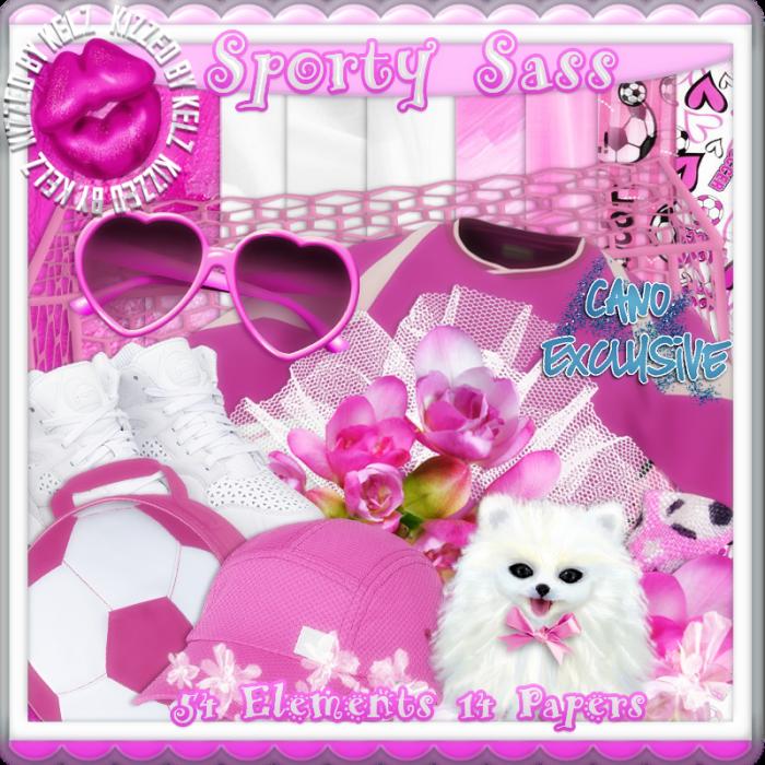 SportySassBonus KITPV2-700x700