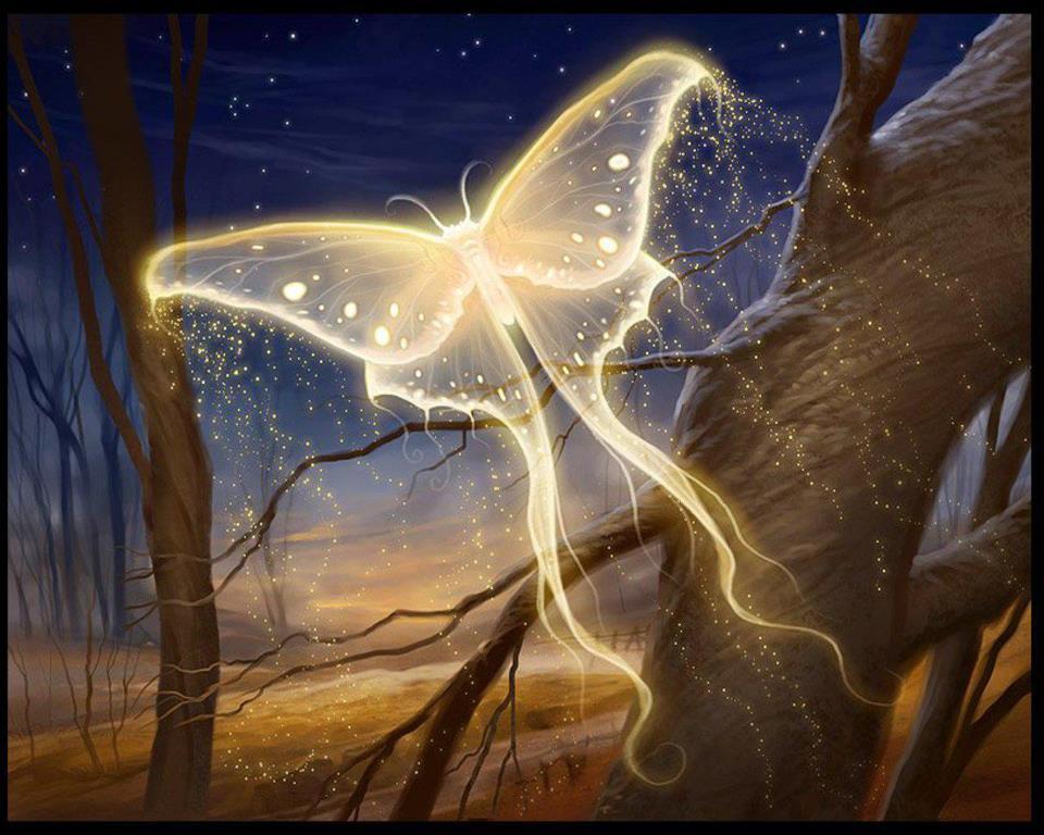 Soul-butterfly