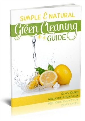 GreenCleaningGuide 3D-300-1