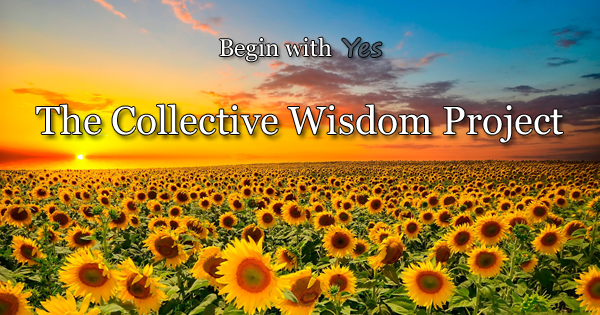 Collective Wisdom-newsletter