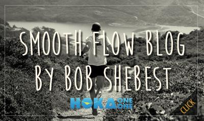 bob shebest blog