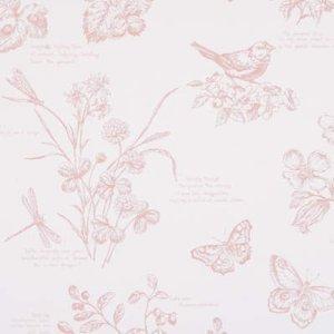Ralph Lauren NATURE STUDY TOILE BLOSSOM Wallpaper