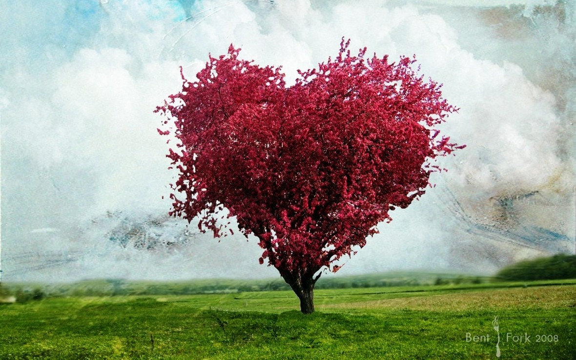 Awesome-Red-Flower-Tree-Heart-Wallpaper