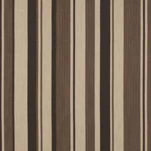 DUNE POINT STRIPE - EARTH