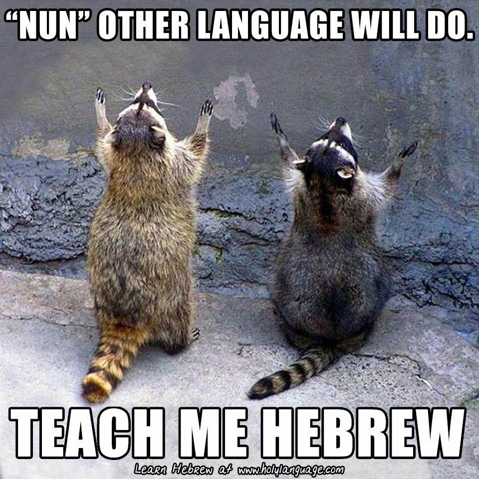 nun other language