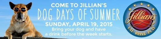 dog days of summer jillians copy
