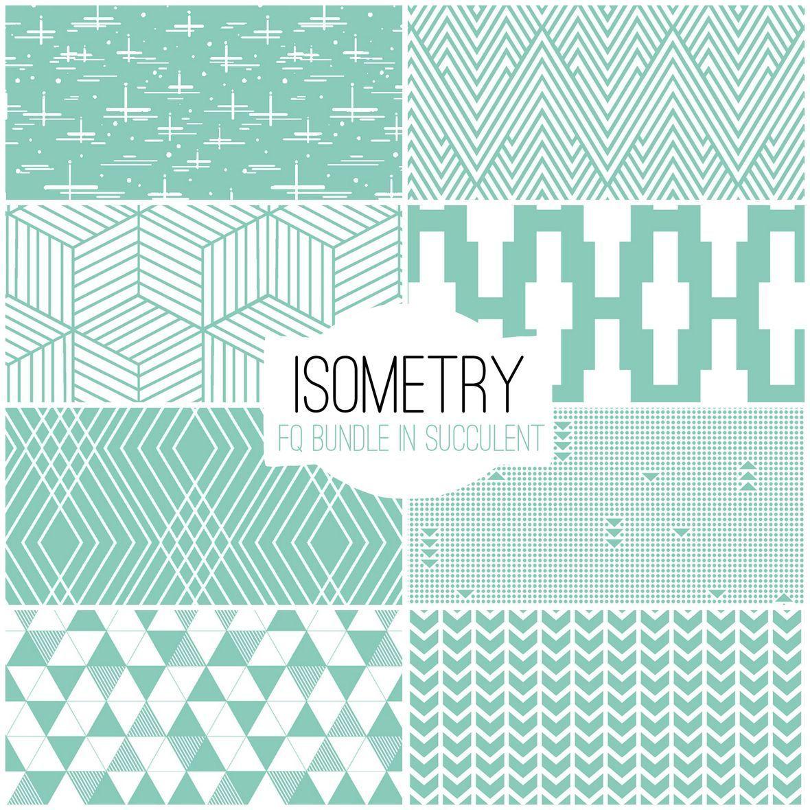 Isometry in Succulent