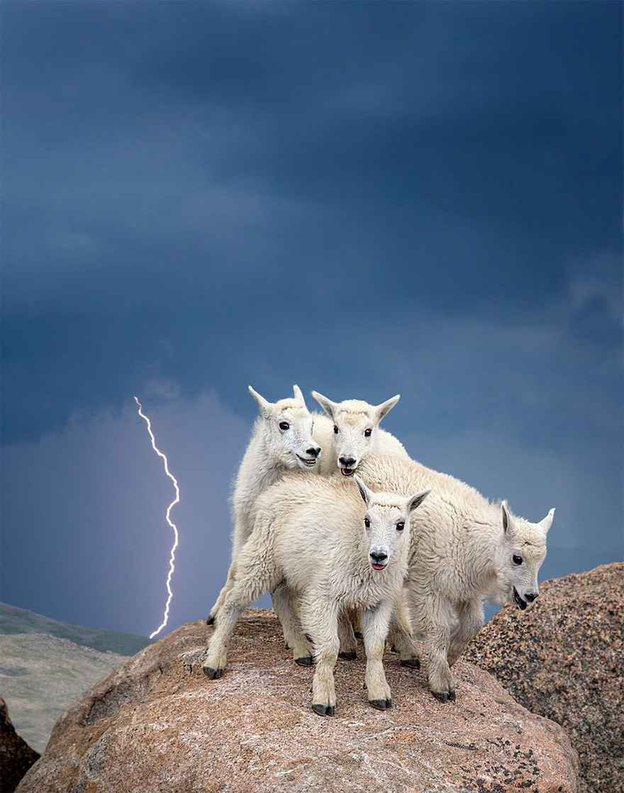american-nature-photography-exhibit-wilderness-forever-smithsonian-5