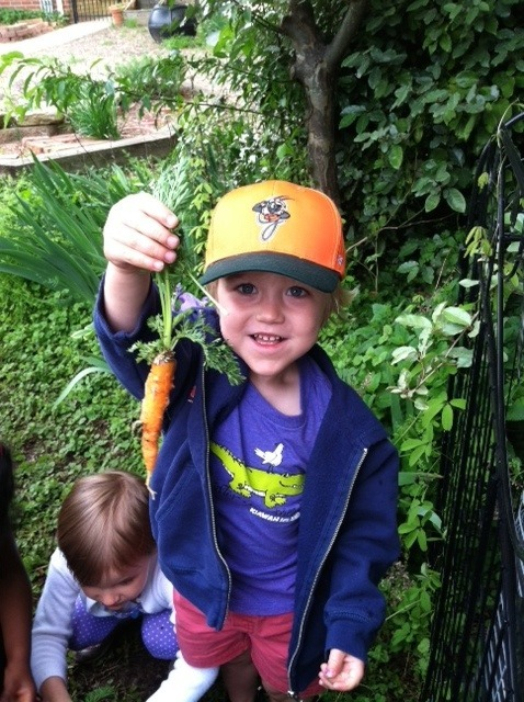 Jacob-carrot