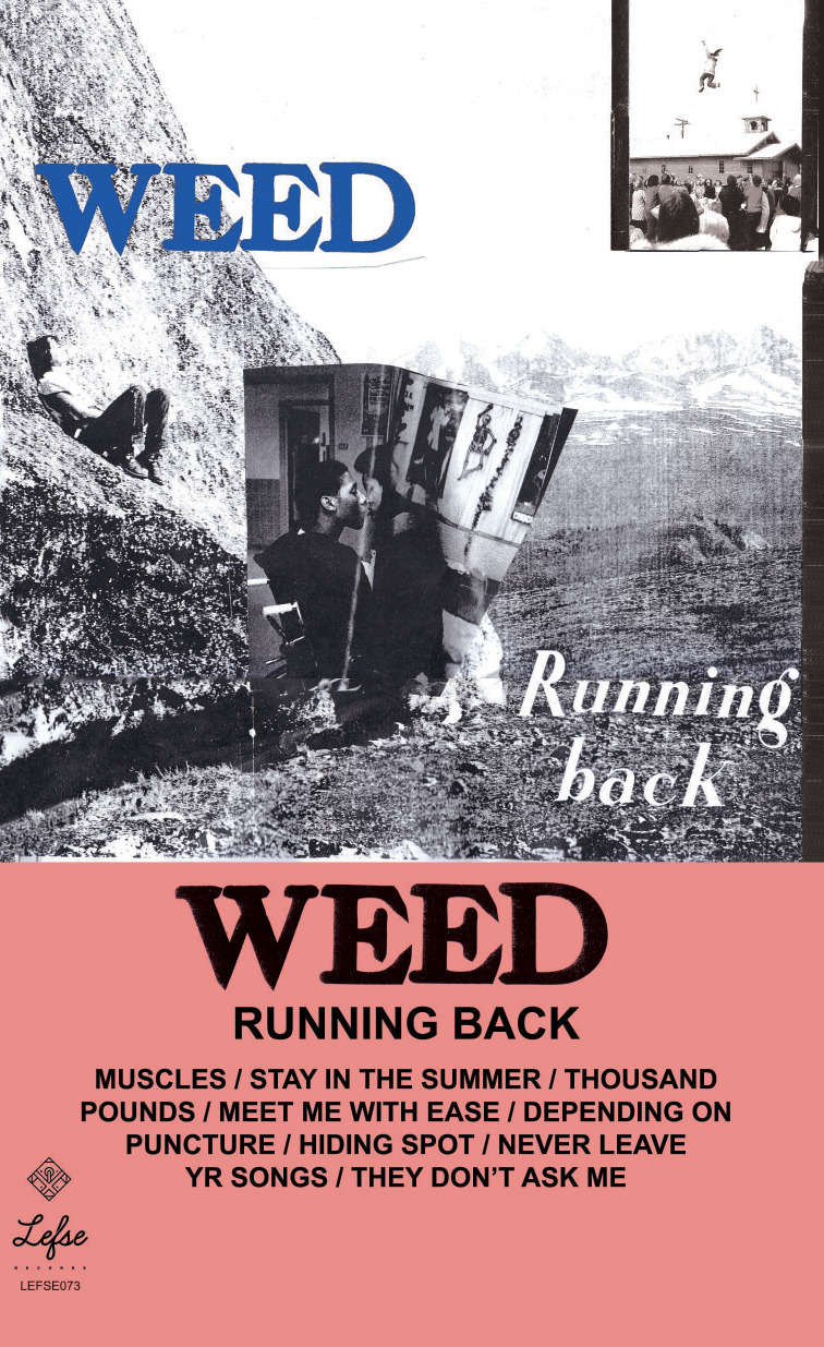 WEED COVER