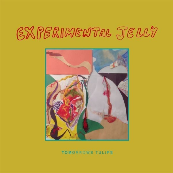tomorrows tulips experimental jelly 1 1