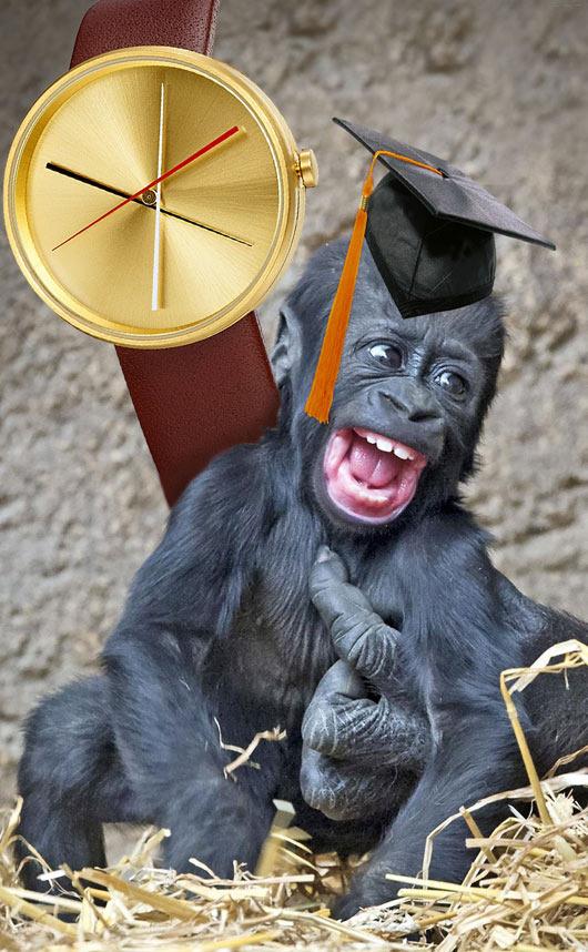 grad-gorilla