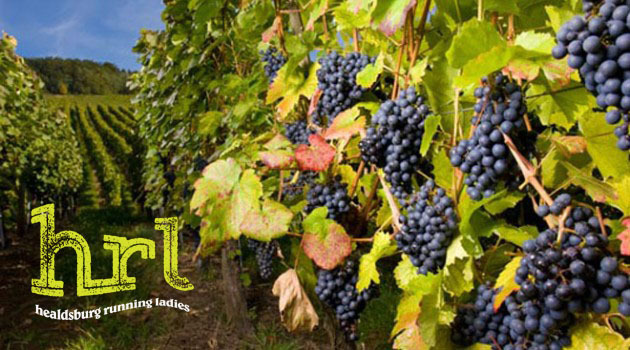 wine-grapes-vineyard-istock-630x350