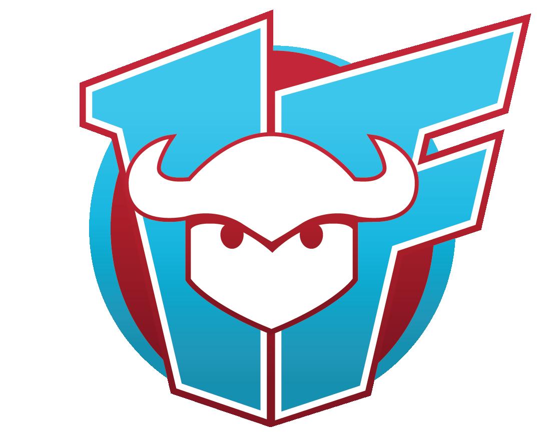 FirstDD logo-BR-2