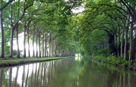 120509214206--Canal-du-midi-530