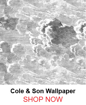 1-cole-son-82-22034-nuvole-storm-wallpaper-116695