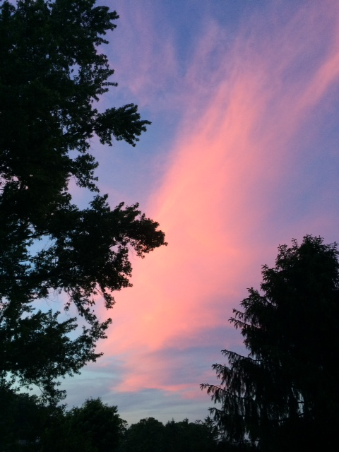 sunrise MW