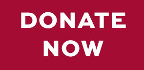 donate now-red