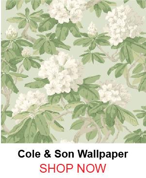 3-6-cole-son-99-4022-bourlie-duck-egg-wallpaper-180518