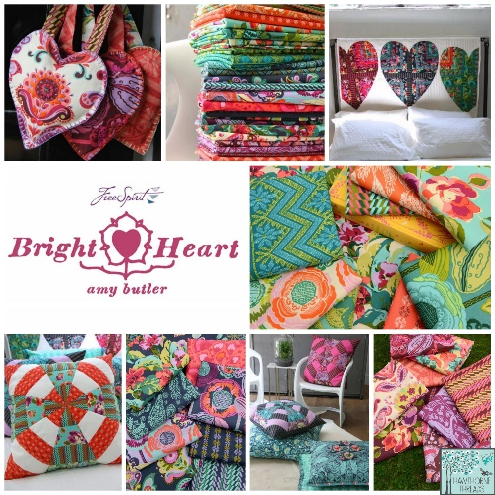 Amy Butler Bright Heart Fabric Poster 2