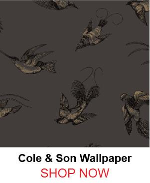 4-cole-son-89-1004-tropical-birds-brown-wallpaper-73450