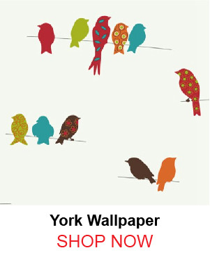 4-york-kb8540-bird-on-a-wire-wallpaper-131771