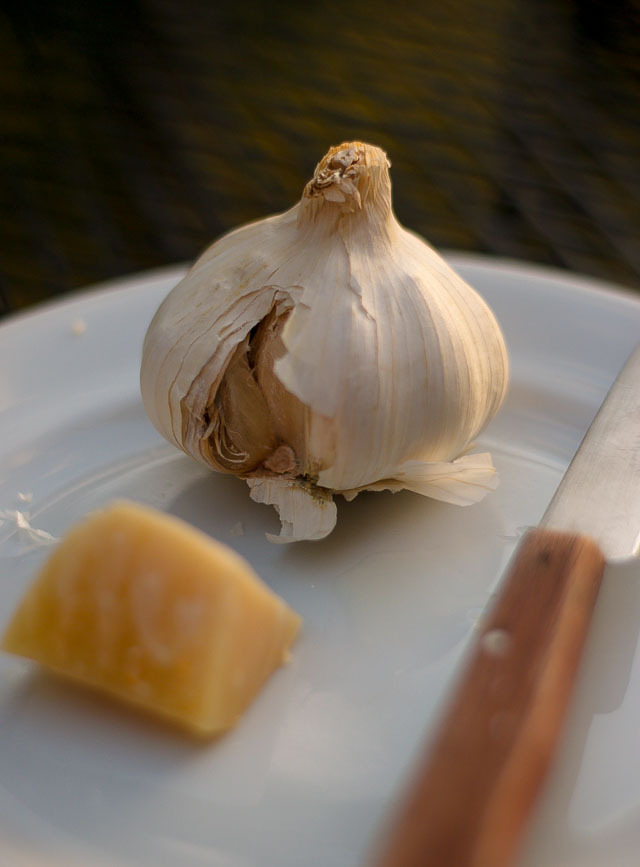 Dandelion Pesto Recipe-3