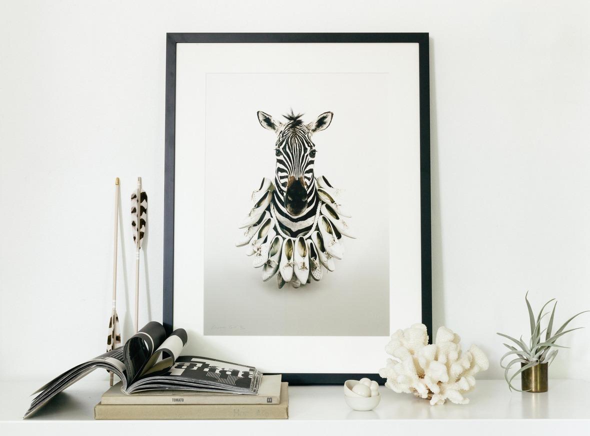 AnnaChurch  Zebra CareerGirl BLKFrame H-1