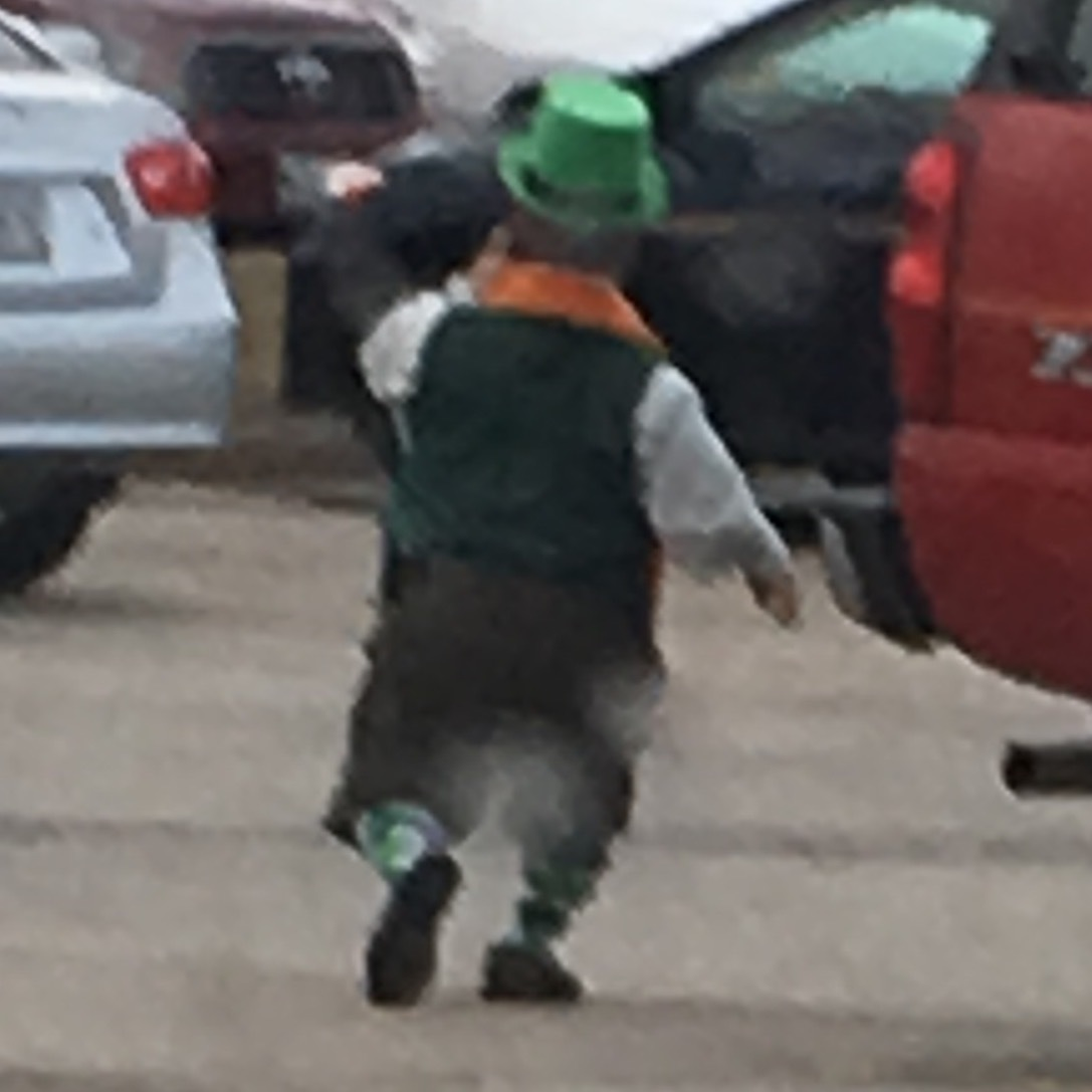 Real leprechaun or midgetjpg