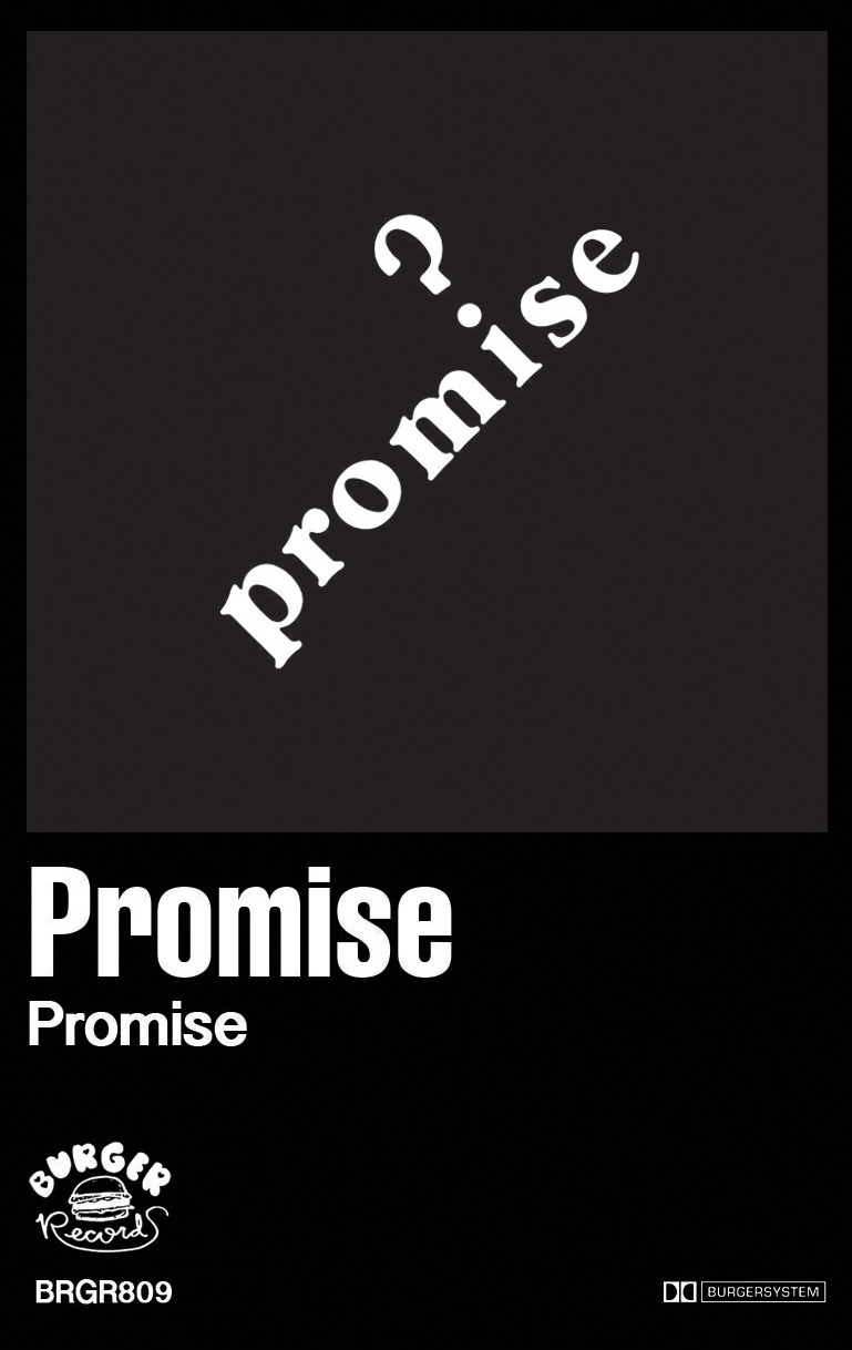PROMISE COVER2