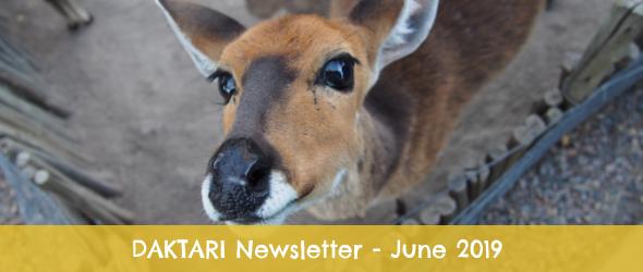 Newsletter header 1