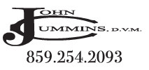 JohnCummins web