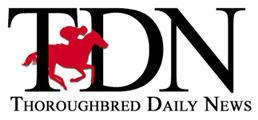 TDN-logo-BigHorse-small web