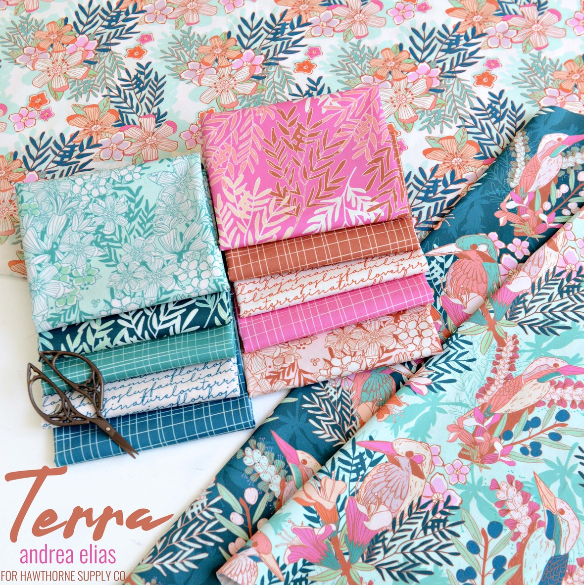 Terra Fabric from Andrea Elias for Hawthorne Supply Co.