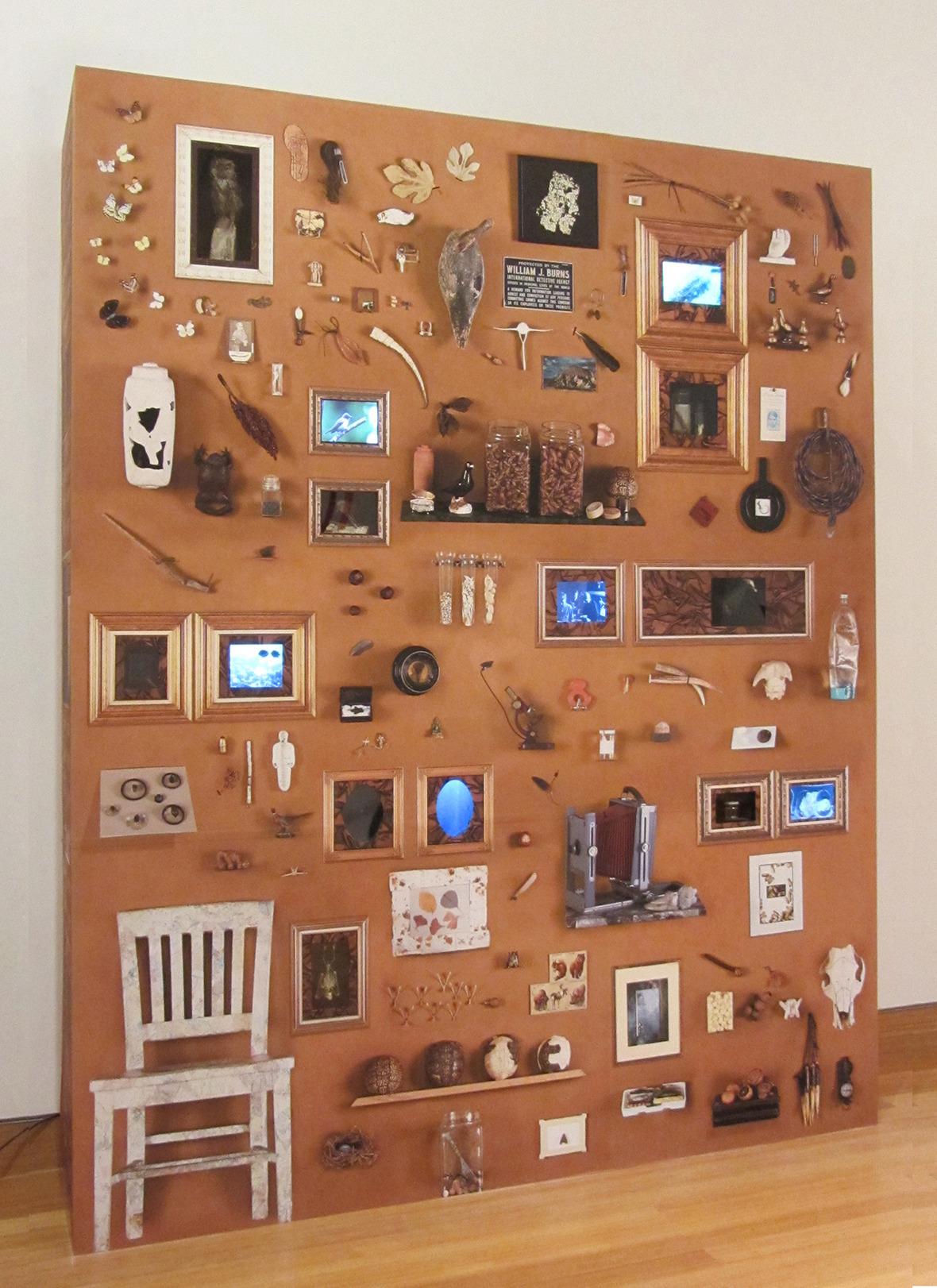 cabinet of Wonder sm