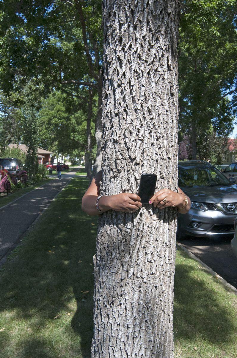 tree takes selfie