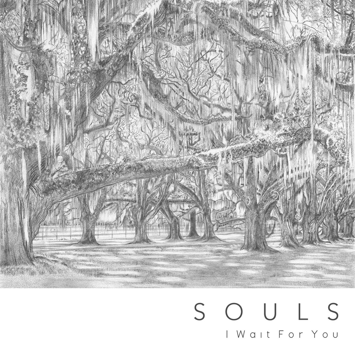 Souls I Wait For You Artwork