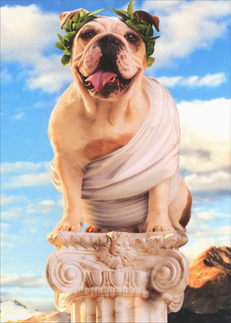 cd3839-toga-dog-on-pedestal-fathers-day-card