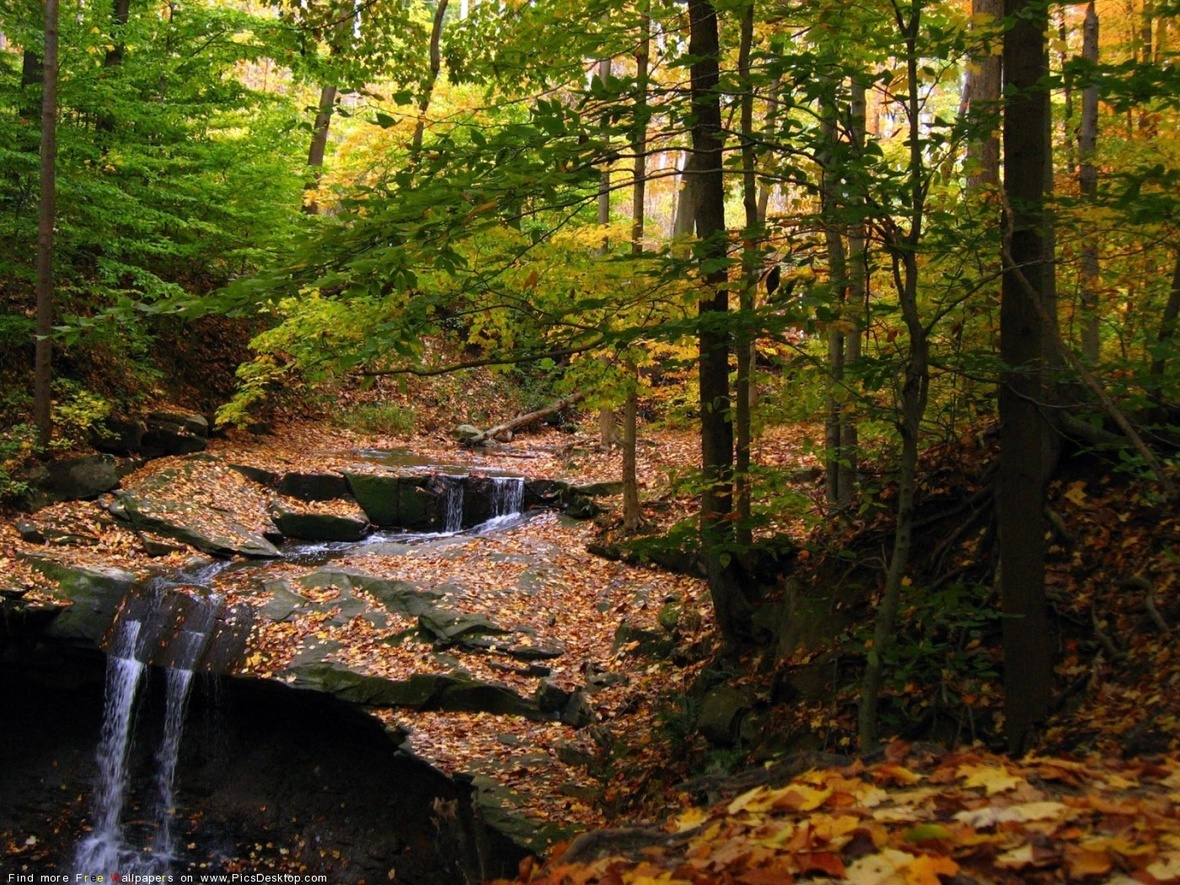 www.PicsDesktop.com 107