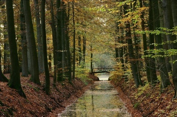 autumn-in-holland-1410318-639x426