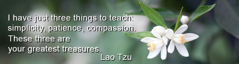 Lau-Tzu-quote