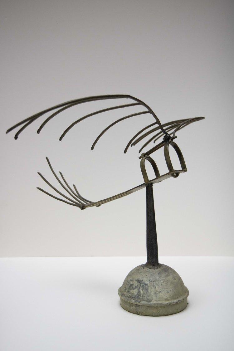 tyrone ferguson rake bird