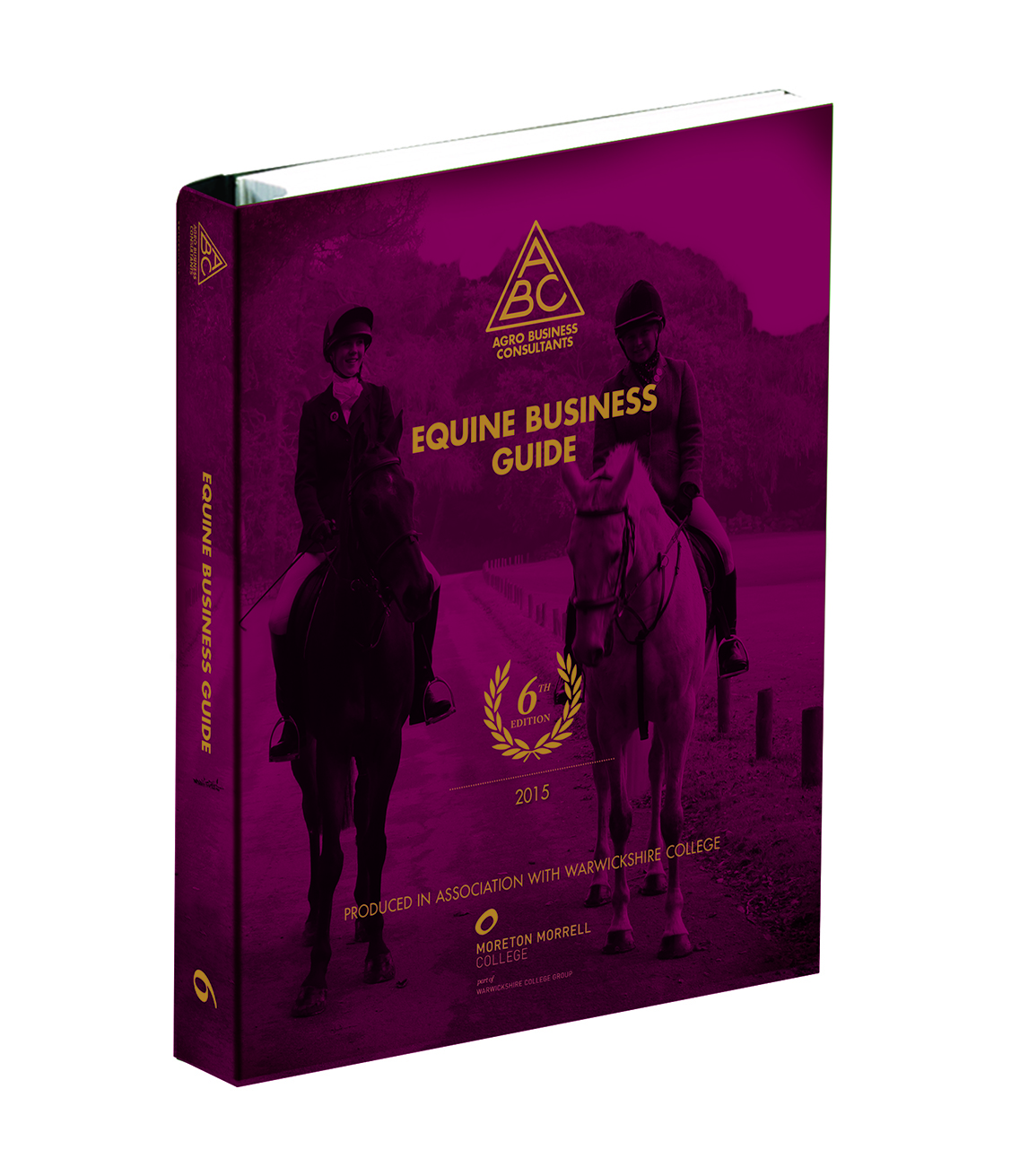 Equine Business Guide Mockup new cover