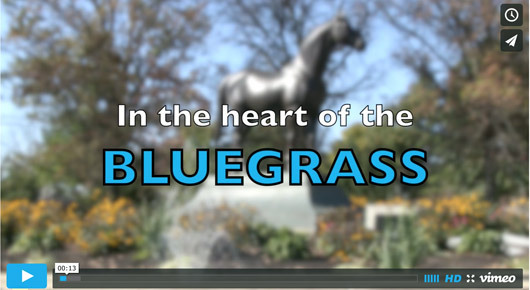 bluegrassVideo