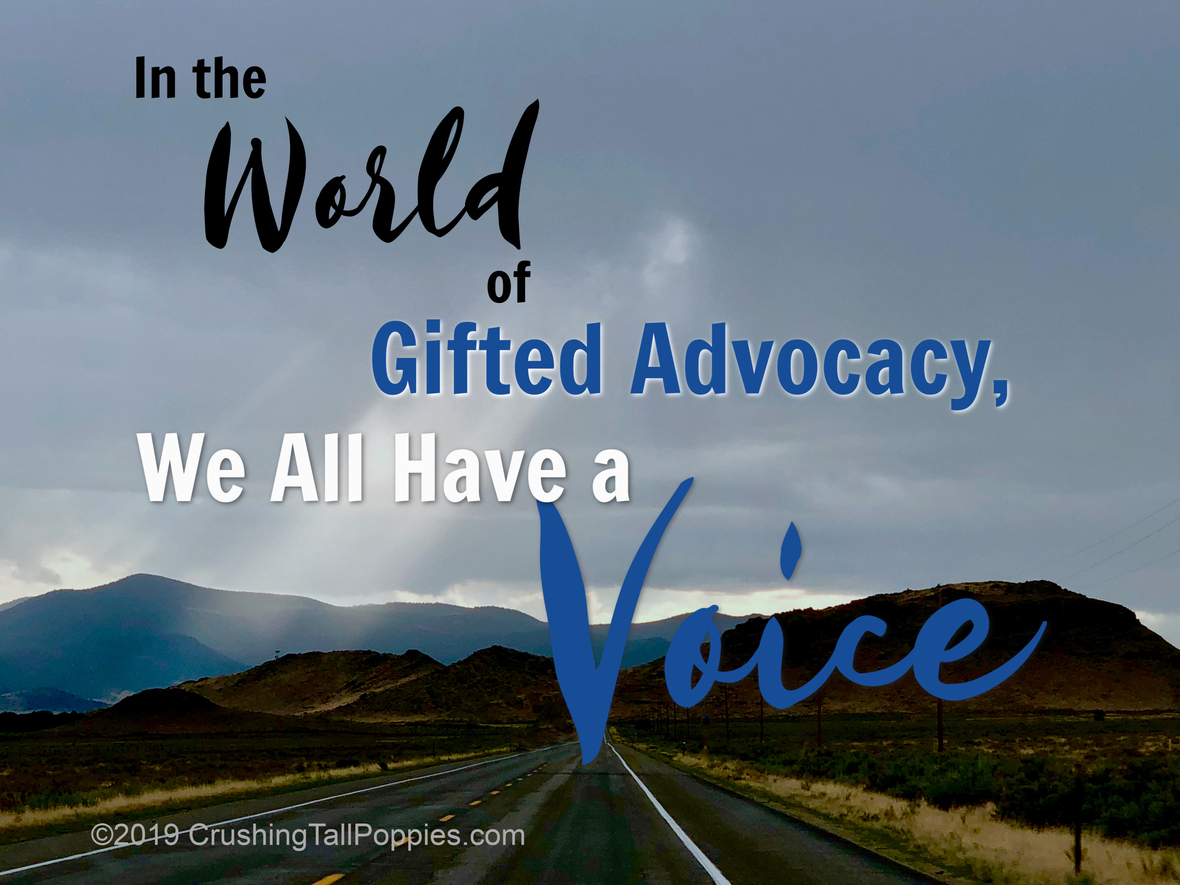 intheworldofgiftedadvocacy