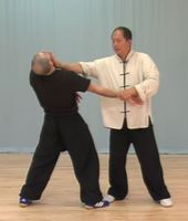 Yang-Style-Self-Defence